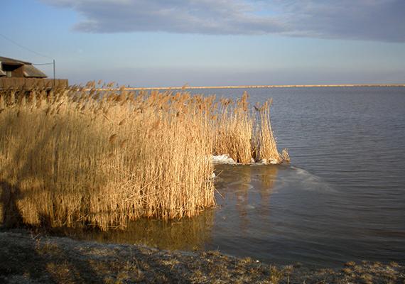 A Fertő-tó páratlan természeti csoda, mely megannyi festői látnivalóval várja a kirándulókat, érdemes azonban ismerni a róla szóló különös legendákat is, melyek több változatban is említenek rejtélyes, elsüllyedt falvakat.