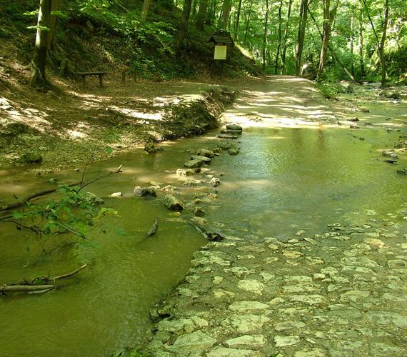 Egyes helyeken a zabolázatlan természet teszi még különlegesebbé a tájat. Az átmosások miatt érdemes vízálló cipőben nekivágni a völgynek.