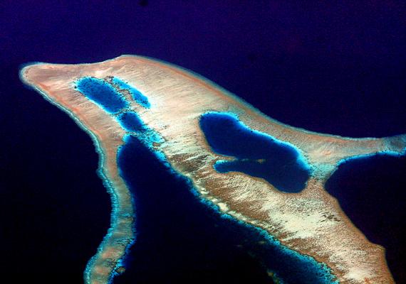 Az indonéziai Flores-szigettől nem messze található ez a delfint formázó természeti csoda.