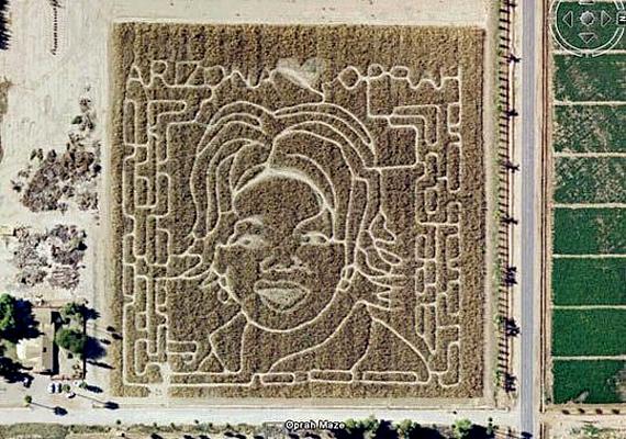 Az arizonaiak pedig így tisztelegnek Oprah Winfrey előtt.