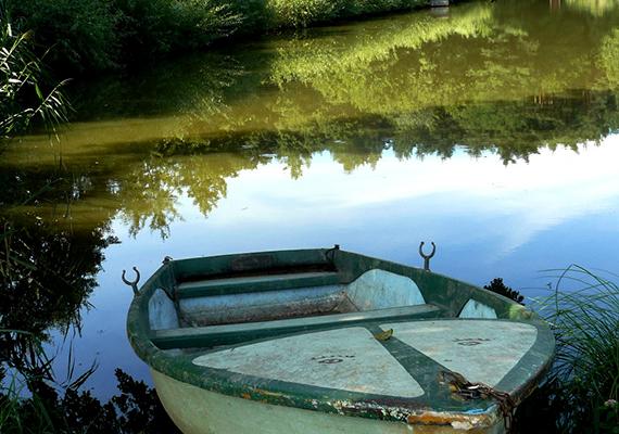 A Vas megyei Szajki-tavak környéke népszerű üdülőhely, a 11 tó között vannak kifejezetten fürdésre és külön horgászásra alkalmasak, így az egész család megtalálhatja a számításait.