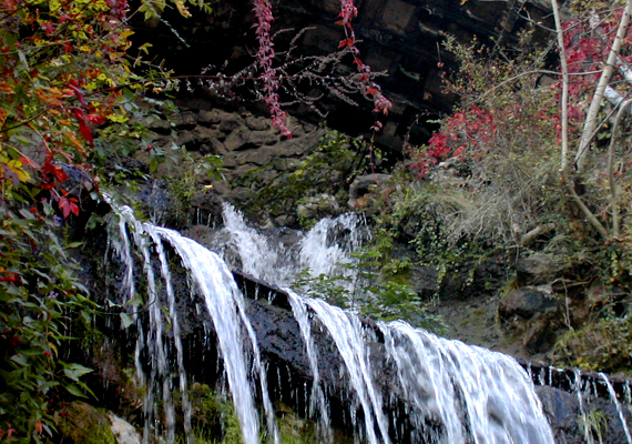 A Gellért-hegyi vízesés és szobor remek úti cél, ha a történelmi látnivalókat és a természeti csodákat is kedveled. A láda koordinátái: szélesség N 47° 29,375'; hosszúság E 19° 2,708'.