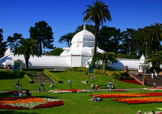 A Golden Gate Park virágairól is híres.