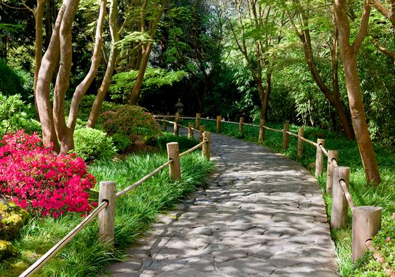 Gyönyörűek a park sétányai.