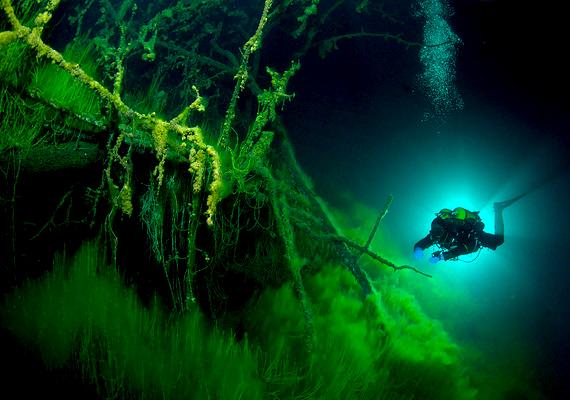 A festői környezetben fekvő tó mélyén állítólag furcsa dolgok rejlenek, a Goluboe azonban nem adja könnyen titkait.