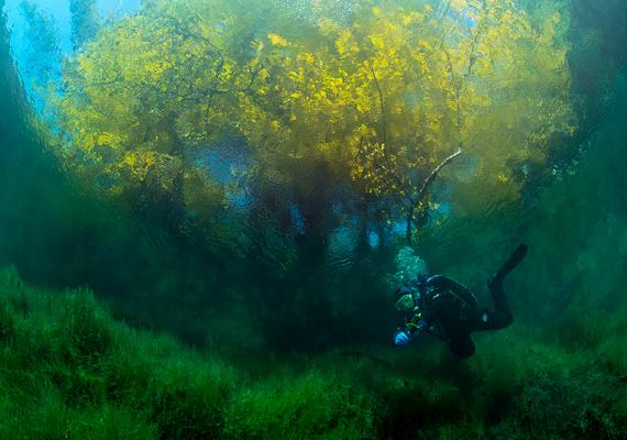 A búvárok szerint a tó feneke alatt egy hatalmas barlangrendszer és alagutak komplex hálózata rejtőzik.