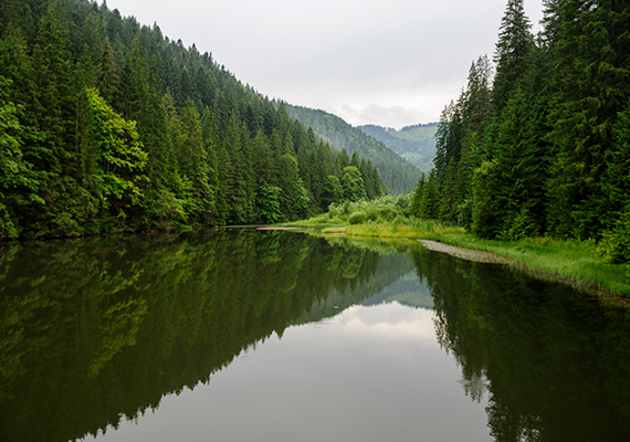A Gyergyószentmiklóstól nem messze, 983 méteres tengerszint feletti magasságban található tó a Gyilkos-kőről az esőzés miatt lezúduló törmeléknek köszönheti létét, amely több patak folyását is elzárta, így hozva létre a természeti csodát.