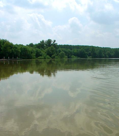 Tiszaroff  Az Árpád-kori település a falusi turizmus egyik legkedveltebb célpontja, mely nemcsak csenddel ajándékoz meg, de a víz közelségét is élvezheted. Tegyél a Tisza mellett egy nagy sétát, emellett a környékbeli tanösvényeket is keresd fel, hisz a terület a Közép-Tiszai Tájvédelmi Körzet része, illetve a Hortobágyi Nemzeti Park által is védett.
