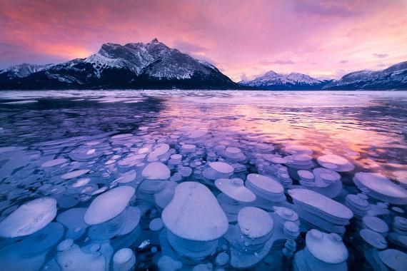 Az egymásra rakódott jégkorongok valójában fagyott metánbuborékok. Alberta tartományban az Ábrahám-tónál látható a különleges látvány.
