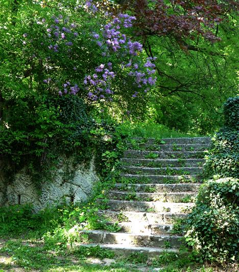 Alcsúti Arborétum  A Fejér megyei Alcsútdoboz déli részén fekvő arborétumban közel 540-féle itthon jól ismert, illetve több ritka és igen értékes növény kapott helyet. A színes, illatos vadvirágok számos fajtájában gyönyörködhetsz, illetve az 1830-ban telepített lenyűgöző libanoni cédrusfát is megcsodálhatod.