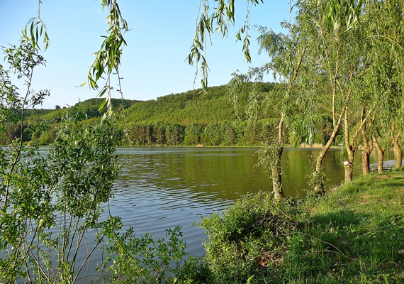 A Lókos-patak felduzzasztásával alakították ki a Nőtincsi-tavat, melyet hamar természetvédelmi területté nyilvánítottak, hála faunájának.