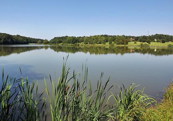 A Vadása-tó az Őrség egyik legszebb üdülőövezetében található, itt futnak össze az Őrségi Nemzeti Park turistaútvonalai, így, ha összekötnéd a kellemeset a hasznossal, mindenképpen látogass el ide.