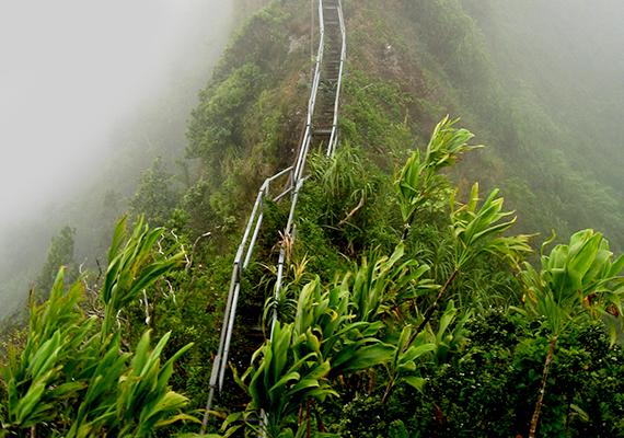 A lépcsőkön tilos felmenni, mert korántsem biztonságosak, ennek ellenére mindig akadnak merész felfedezők, akik fittyet hányva a veszélyre megpróbálják meghódítani a csúcsot. Sajnos halálesetek és balesetek is kötődnek emiatt a helyhez - morbid humorra utal, de vannak, akik szerint ez is alátámasztja, hogy a lépcső a túlvilágra vezet.