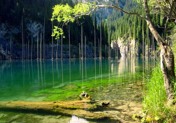A kazahsztáni Kaindy-tó egy földrengés során keletkezett: a földcsuszamlás miatt víz alá került fák maradványai máig kísérteties látványt nyújtanak.