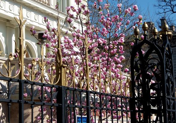Az Andrássy út gyönyörű, régi épületeivel és villáival tökéletes helyszín egy romantikus sétához. A háttérképért kattints ide!