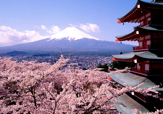 A japán Kiotó cseresznyevirágait az egész világon ismerik. A háttérképért kattints ide!
