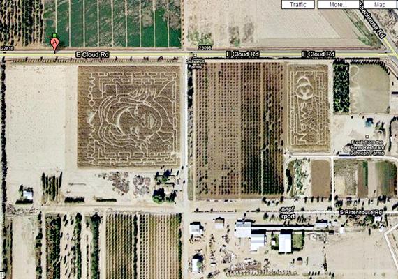Napjaink egyik legbefolyásosabb hírességét, Oprah Winfrey-t egy arizonai farmer örökítette meg 2004-ben.