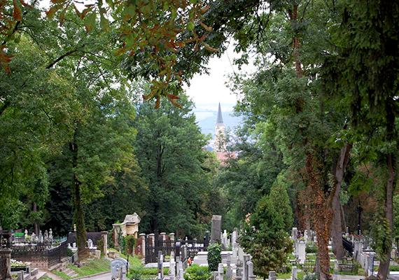 Bár hivatalosan már nem tartozik Magyarországhoz, sokan máig az egyik legjelentősebb, hazánkhoz köthető temetőnek tartják a Kolozsváron található Házsongárdi temetőt, mely Erdély talán legismertebb sírkertje. 1585-ben, a pestisjárvány idején alapították, és a 17. századtól kezdve temették ide az erdélyi szellemi élet meghatározó személyiségeit. A szimbolikus jelentőséggel bíró temetőben nyugszik mások mellett Szenczi Molnár Albert, Apáczai Csere János, Reményik Sándor és Dsida Jenő is.