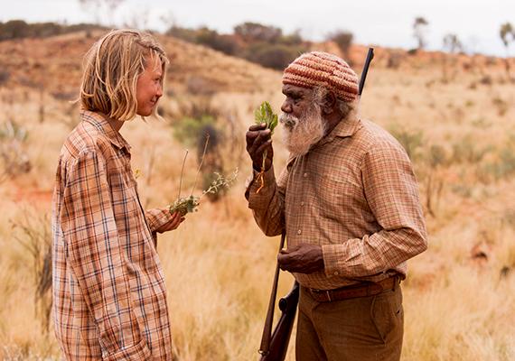 Bár nem akarta leírni az ausztrál őslakosok vándorlásával párhuzamba vonható történetét, a National Geographic magazin támogatta az utat, minek köszönhetően abban cikk jelent meg, azokkal a híres fotókkal, amelyeket Rick Smolan, a Robynnal több alkalommal is találkozó fotós készített. A történet végül könyv formájában is megjelent, majd 2013-ban filmadaptáció is készült azonos, Tracks címmel, John Curran rendezésében, Mia Wasikowska főszereplésével. A képen a filmből látható részlet.