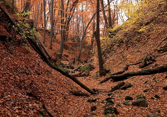 Anonymous is írt arról krónikájában, hogy a fejedelmet egy kis folyó forrása felett temették el, mely kőmederben folyik alá Attila király városába.