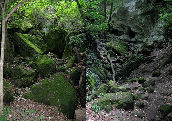 Az ásatásokat a világháború félbeszakította, 1960-ban azonban újraindultak, ennek során pedig újabb leleteket találtak, melyek azt bizonyították, a területen egykor középkori település állhatott.