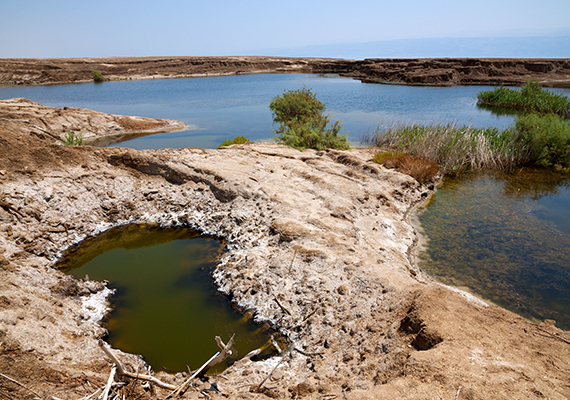 A Holt-tenger pusztulása a vízszint folyamatos csökkenésének köszönhető, ami a Jordán vizének nagymértékű kitermeléséből, illetve a sólepárlásból fakad - a tó vize évente egy méterrel csökken, hiszen ennyi idő alatt több mint egymilliárd liter víztől fosztják meg.
