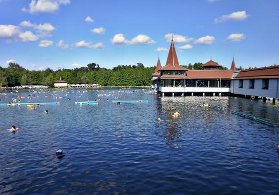 Magyarország igazi termálvíz-paradicsom, de a leghíresebb mind közül a Hévízi-tó, mely a világ egyedüli természetes tőzegmedrű gyógytava.