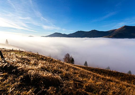 """""""Azt hiszem, akkor lesz egy hegycsúcson igazán szép a kilátás, hogyha gyalog megyünk oda fel, megizzadunk, verejtékezünk és elfáradunk."""" Böjte Csaba"""