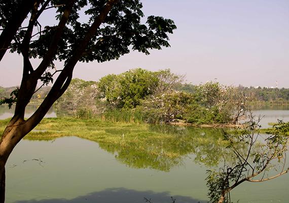 Bármilyen festői is a Kukkarahalli-tó környéke, sokan nem utaznak itt szívesen motorral, utóbbi ugyanis a beszámolók szerint gyakorta romlik el, emellett történetek szólnak olyan esetekről is, mikor a vezető úgy érezte, mintha nem lenne egyedül, és valaki utazna mögötte.