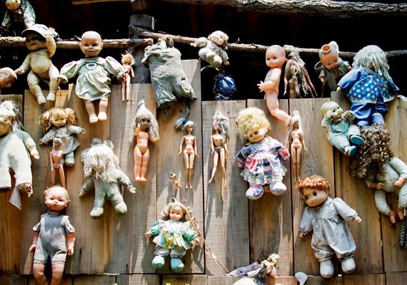 A látogatók számra napról napra növekszik, ahogy általuk a babáké is.
