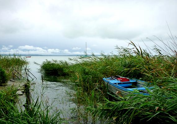 Az MSZP-s Szanyi Tibor a Balaton-partot, azon belül is Zánkát veszi célba.