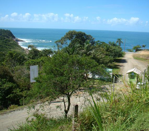 A brazíliai Praia do Pinho 1987 óta várja a naturistákat. A nudista strandok igen ritkák az országban, ezért a hely igen népszerű.