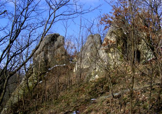 Nyerges-hegyi kaptárkövek Eger külterületén.