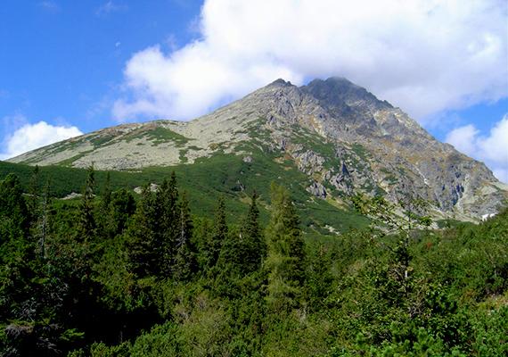 A Kárpátok legmagasabb pontja Szlovákiában található, ez a Gerlachfalvi-csúcs, mely nevét a határában fekvő községről, Gerlachfalváról kapta. A hegység itt 2566 méter magas.