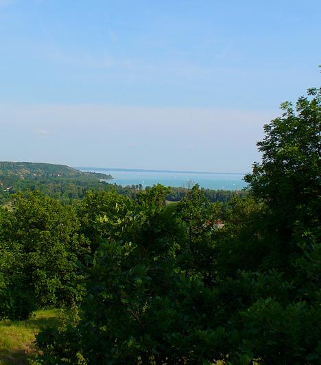 BalatonfűzfőMivel a Fűzfői-öbölben igen kedvező a széljárás, Balatonfűzfő nem csupán a strandolók, de a szörfösök és vitorlázók paradicsoma is. A part mellett továbbá olyan látnivalók várják az ideérkezőket, mint a Romkúti-mező és a római kori romok, illetve a Máma-tető, ahonnan csodás kilátás nyílik a magyar tengerre.Kapcsolódó cikk:A 3 legjobb bobpálya itthon »