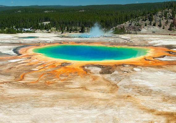 A Yellowstone Nemzeti Parkban található, szintén forrongó Grand Prismatic-tó megdöbbentő színvilága a thermofil baktériumoknak köszönhető.