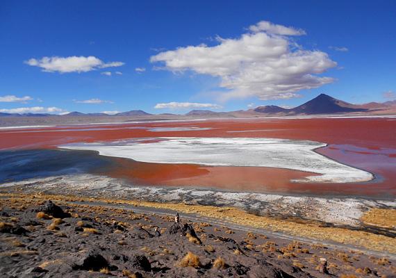 A sós vizű Colorada lagúna Bolíviában található, különleges, piros árnyalatát az itt élő algáktól kapta.