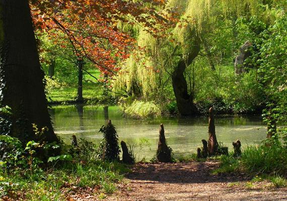 Sir Anthony Hopkinsnak egészen kifinomult ízlése van - az Alcsúti Arborétum tett rá mély benyomást.