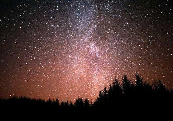 A Csillagos Égbolt Szövetség a Galloway Erdő Parkot is befogadta kezdeményezésébe, hiszen a csillagok itt egészen új értelmet nyernek.