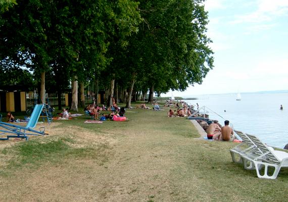 A révfülöpi strandon hatalmas, árnyas fák lombkoronái alatt pihenhetsz.
