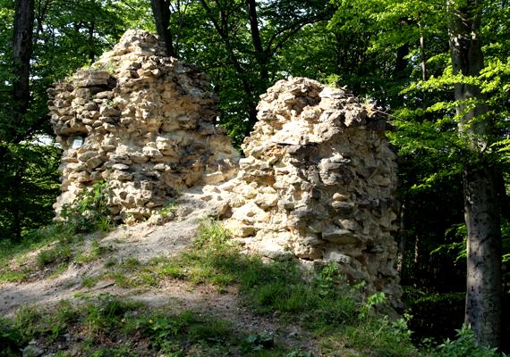 A Gerencsérvár romjainak félelmetes voltát amellett, hogy mára alig áll belőle valami, misztikus környezete adja: az épület a fák sűrűjében található.