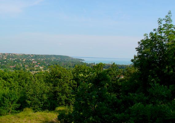 A Balaton északkeleti csücskén található Balatonfűzfő a Fűzfői-öbölnél fekszik.