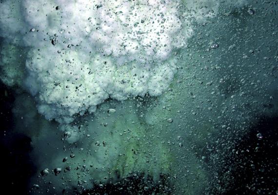 A japán NW-Rota 1 2006-os kitörésével írta be magát a tudomány történetébe: a tudósok még soha nem voltak olyan közel víz alatti vulkánhoz kitörés közben, mint akkor.