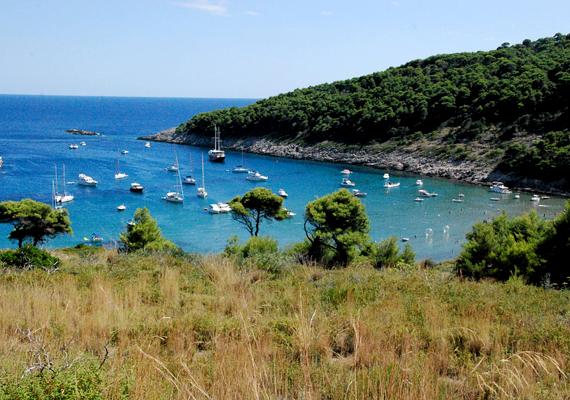 Bár Horvátországban számos nudistra strand található, a Sunj nevezetűt tartják a legszebbnek.