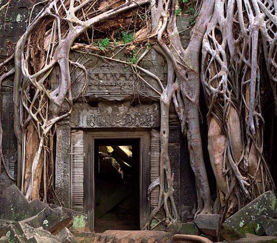 Omladozó épületeit ma moha és zuzmó borítja, emellett a dzsungel fái is birtokba vették, hatalmas gyökereikkel a falakat is áttörik.