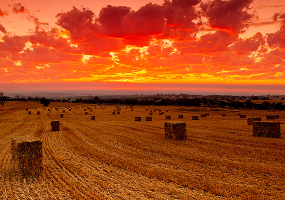 Az ausztráliai Avon Valley Nemzeti Park naplementéje képeslapra illő.