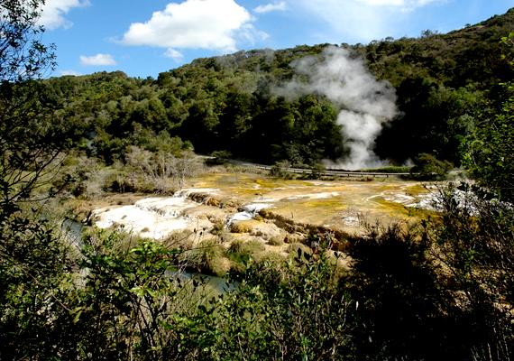 Az új-zélandi Waimangu-gejzír egykor a világ legerőteljesebb gejzíre volt, csaknem fél kilométeres kitöréseket is képes volt produkálni. Sajnos tragédiák is köthetők nevéhez, 1903-ban négy turistát ölt meg a kitörő víz, mivel figyelmen kívül hagyták a biztonsági figyelmeztetéseket.