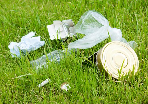 A szemetet a kijelölt piknikezőhelyek kukáiba dobd, vagy csomagold el, és a legközelebbi hulladékgyűjtőbe dobd ki. A szemetelésért komoly büntetés jár, hiszen a nem lebomló hulladék az állatokra is veszélyt jelent, nem beszélve a környezetszennyezésről.