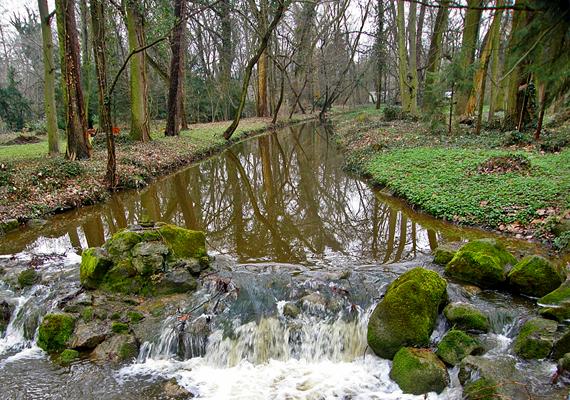 A Vácrátóti Arborétum egész évben gyönyörű látvány: a 24 hektáros park hazánk leggazdagabb tudományos élőnövény-gyűjteménye.