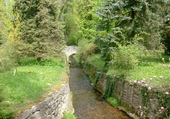 A legmagasabban fekvő magyar települést, a Bakony fővárosának is nevezett Zircet mesés arborétuma miatt is érdemes felkeresni.